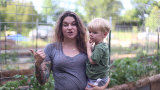Using Cattle Panels for Vertical Gardening in Raised Beds