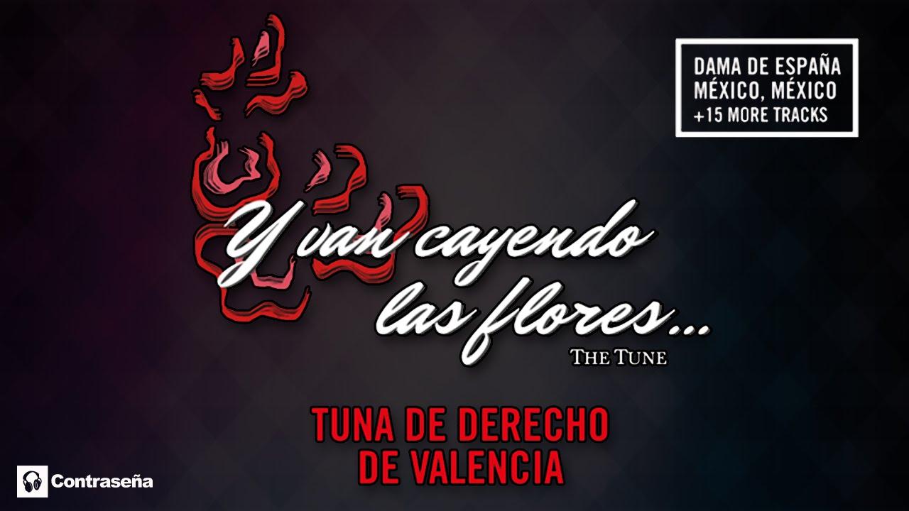 Lo Mejor De La Tuna Tuna De Derecho De Valencia The Tune Y Van Cayendo Las Flores