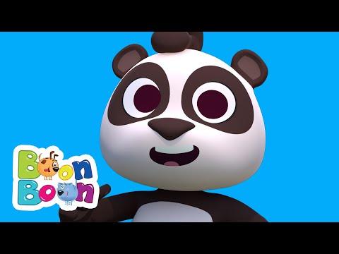 Ursuletul Panda | Cantece cu animale | Dansati cu ursuletii | Cantece BoonBoon – Cantece pentru copii in limba romana