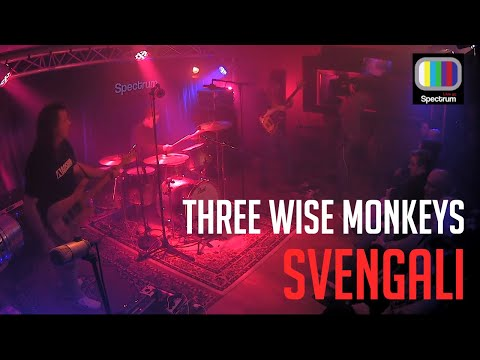 Three Wise Monkeys - Svengali (Live at Spectrum August 2017)