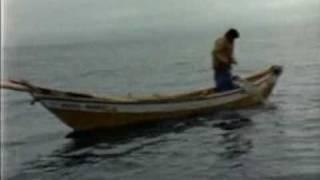 Cod Fishing, Pesca Do Bacalhau, Newfound Land, Portugal, Canada, Creoula, 1966, The White Ship