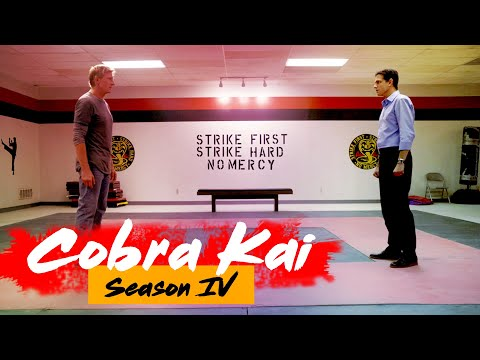 Cobra Kai Season 4: Release Date, Cast, Plot And Many More Things!!- US News Box Official