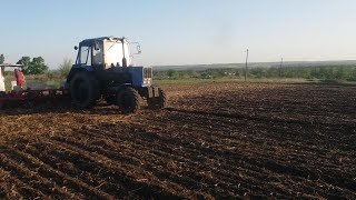 Посев подсолнуха НС Х 2652