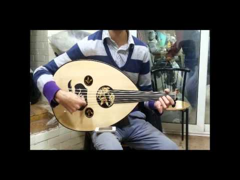 Maurice Shehata Oud ASEEL - 2262