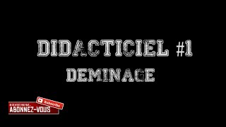 GROUPE DCPJ | DIDACTIEL #1 DEMINAGE | ROLEPLAY FR | GTA V ONLINE