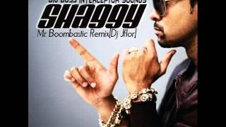 Shaggy - Mr Boombastic Remix[Dj Jflor ft. Dj Jomar]