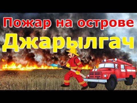 Пожар на острове Джарылгач/Последствия Пожара/2019 год