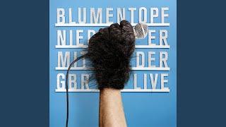 Fenster zum Berg (Live At The Muffathalle/ München/ Germany, 22nd December 2012)