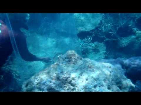 Fiskefangst utenfor Thousand Islands, Java (2).MP4