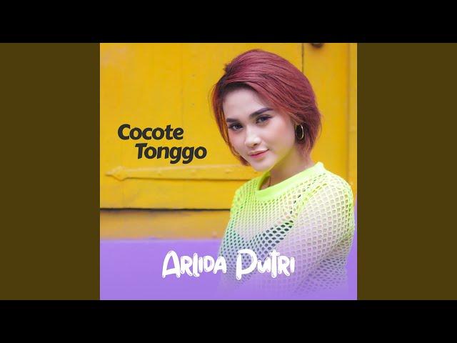Cocote Tonggo