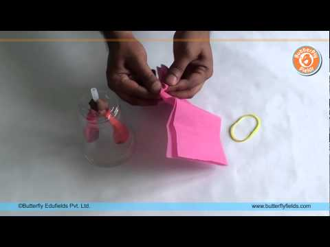 Make working Lung Model | Science Projects | Butterfly Fields