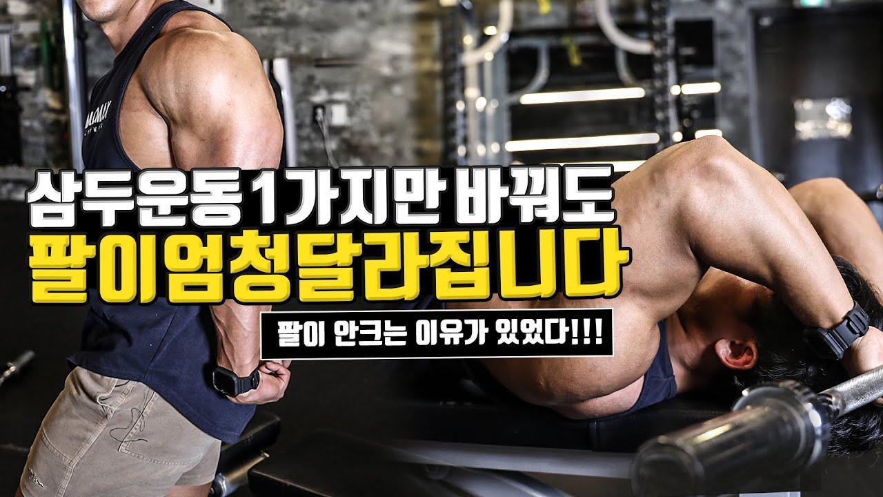 당신의 팔이 두꺼워지지 않는다면 무조건 바꿔라!  l 라잉 트라이셉스 익스텐션 삼두장두 응용운동법