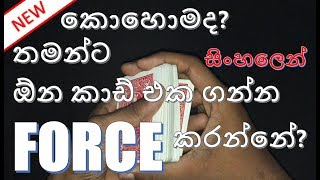 How To Force A Card To Take - Episode 01 | Vro Magic Sinhala