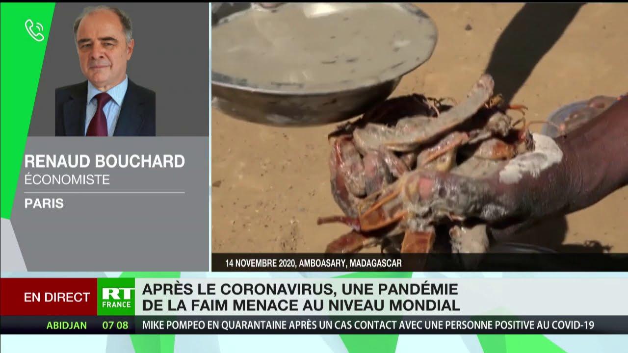 Download Vers une crise alimentaire en 2021 ? L'avis de Renaud Bouchard