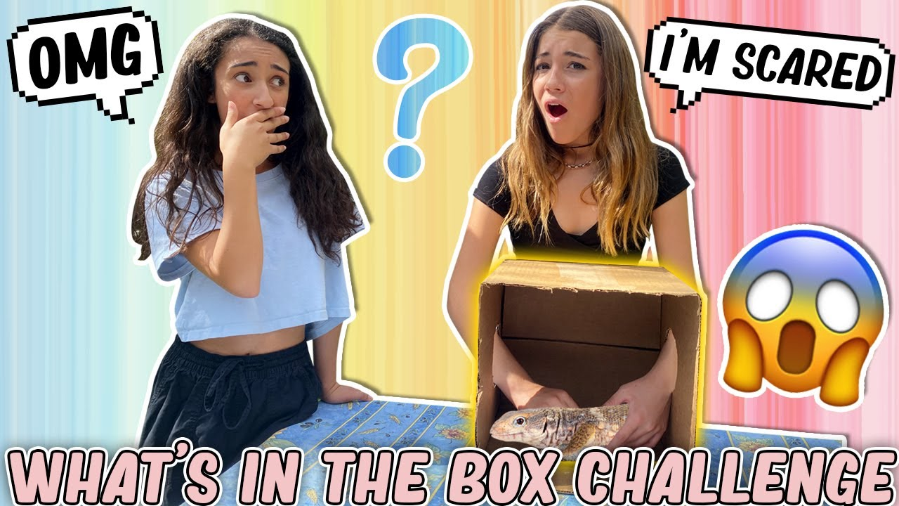 WHAT'S IN THE BOX CHALLENGE (FREAK OUT) with Mona! | Clementine Lea