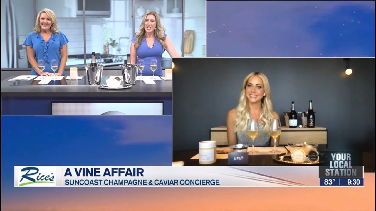 A Vine Affair- My Suncoast View on ABC7 Sarasota