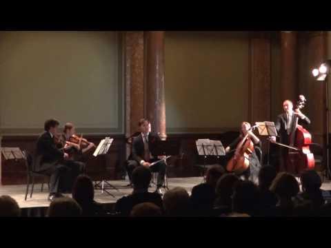 Heinrich HOFMANN: SERENADE for Flute and Strings OP. 65. Dávid Kanyó - flute