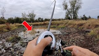 MONSTER FISH CAUGHT FROM TINY PUDDLE??? (Fishing an ABANDONED Golf Course - Part 2)