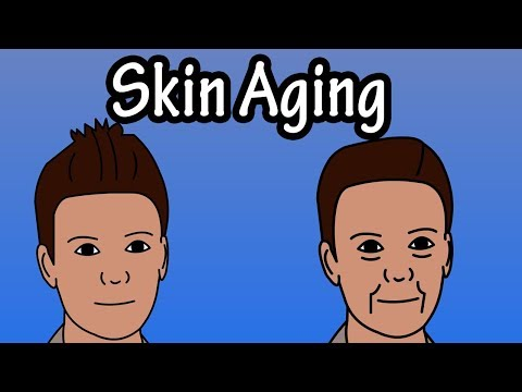 The Skin With the Ages