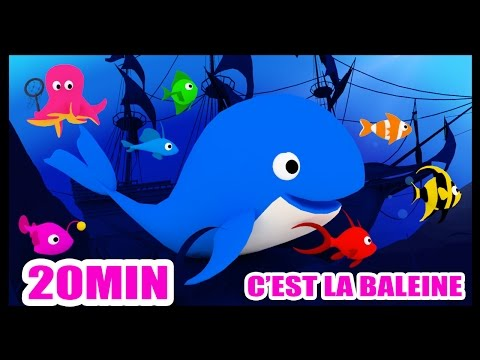 C'est la baleine - Comptines pour les petits - Méli et Touni - Titounis
