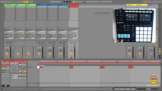 Use the Maschine Controller as a Keyboard or Drum Pad with Ableton Live 10.