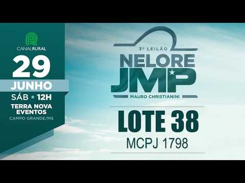 LOTE 38