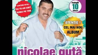 Nicolae Guta - Cine aduce bautura (Audio oficial)