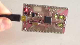 Microchip PIC32MX795 development board
