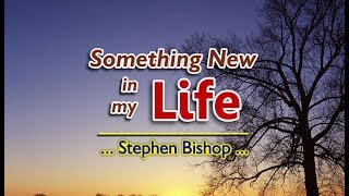 Something New In My Life - Stephen Bishop (KARAOKE VERSION)