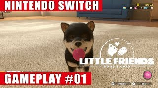 Little Friends: Dogs & Cats Nintendo Switch Gameplay #1 | Welcome Home