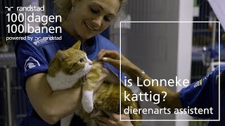 Een baan als katten dierenarts? - Dag 53