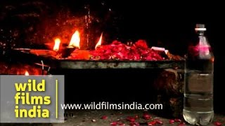 Oil lamps and flowers offered to jinns