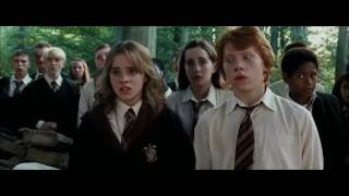Ron and Hermione Tribute - Cant Help Falling In Love (21 Pilots)