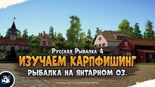 Оз. Янтарное, фарм на Карпах? Русская Рыбалка 4
