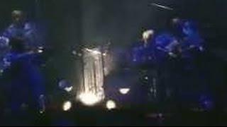 moonriders - Who