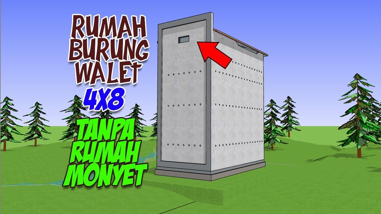 Desian Gedung Walet RBW 4x8 Tanpa Rumah Monyet  YouTube
