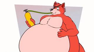 Foxy The pirate fox Belly Inflation