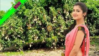 mamarathu kuyilu 8d surrounding tamil songs