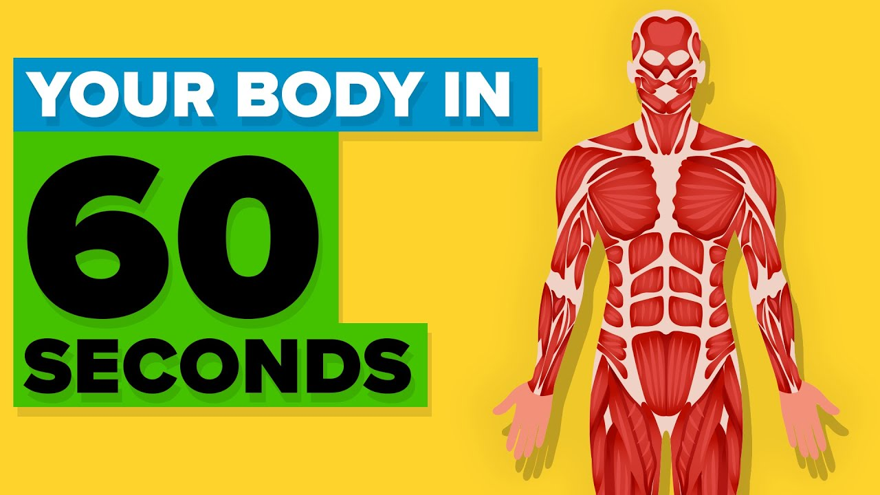 what+happens+to+your+body+after+60