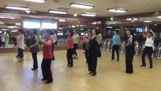 Shake Yourself Loose  Line Dance