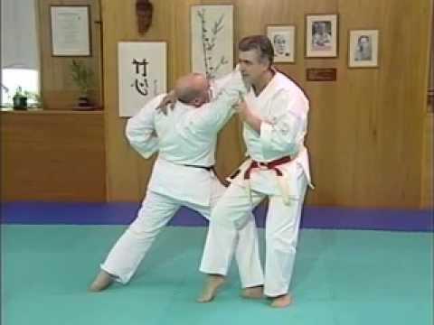 Funakoshi's Nine Throws