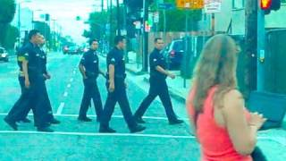 WHY DID 6 COPS CROSS THE ROAD?