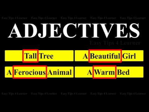 List of Amazing Adjectives | English Grammar