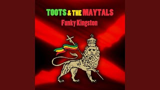 Funky Kingston (Instrumental Version)
