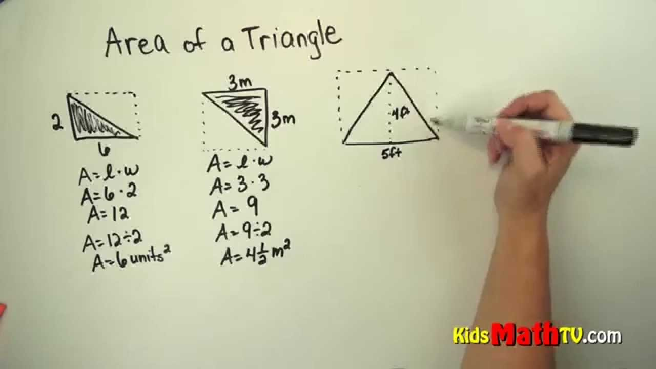 Learn How To Find The Area Of Right Triangle Video For Children