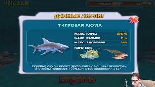 Прохождение HUNGRY SHARK EVOLUTION 4 - ТИГРОВАЯ АКУЛА [Tiger Shark]