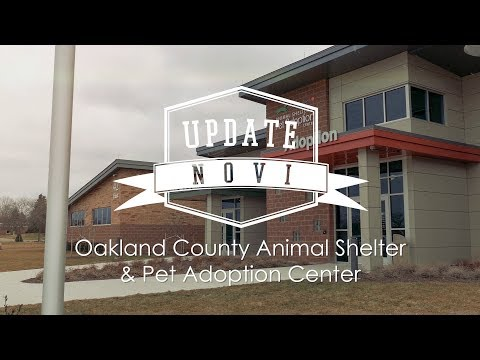 Update Novi: Oakland County Animal Shelter & Pet Adoption Center