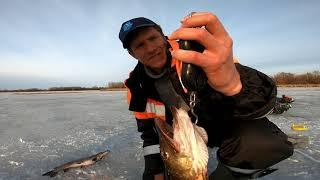 Зимняя рыбалка 31 03 2021 01 04 2021 в Саратовской области Жерлицы на щуку