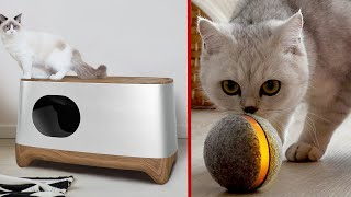 7 Coolest Cat Accessories & Gadgets 2021  You Must Have
