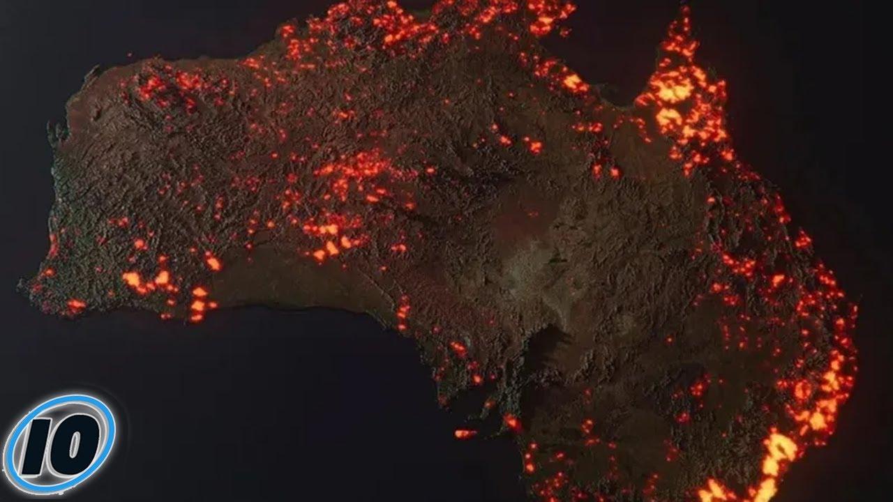 Страшните последици што можеме да ги очекуваме од пожарите во Австралија